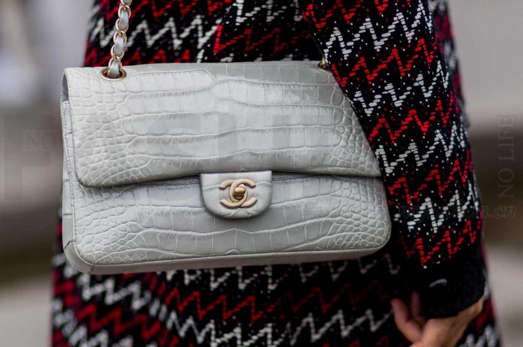 Chanel香奈兒宣布不再使用特種皮和皮草