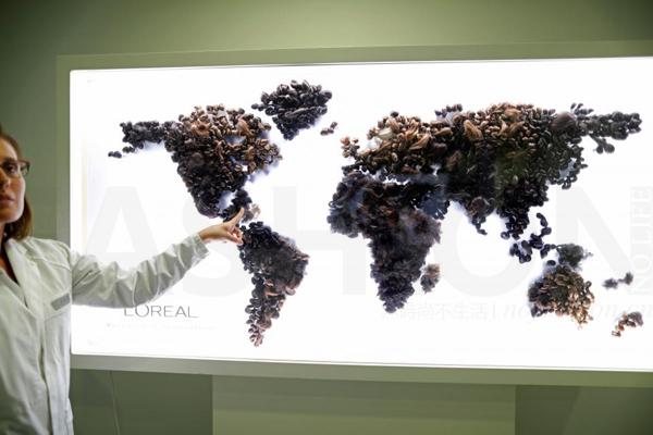 消费者健康绿色理念倒闭美容巨头 L'Oréal欧莱雅首次推出全植物色素天然染发剂