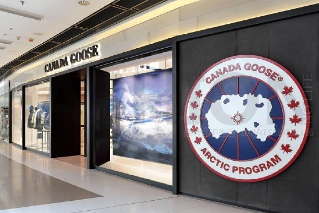 加拿大鹅股价再创新高